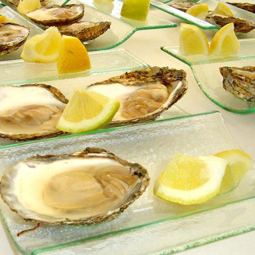 Limfjordsøsters® 1 stk. str. A - Webshop - Glyngøre Shellfish